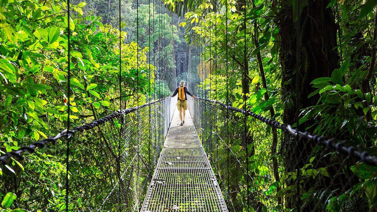 voyage-monteverde-costa-rica-4.jpg