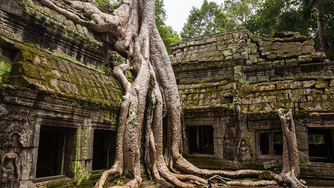 tourisme-temple-ta-prohm-4.jpg