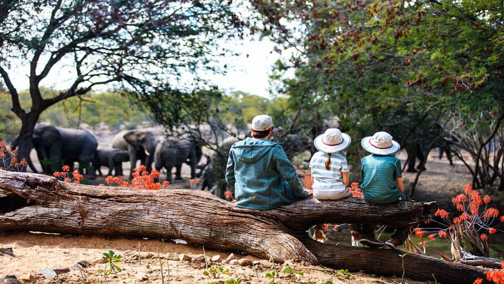 Afrique du Sud en famille